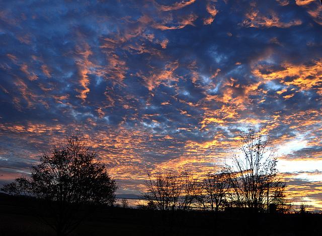 Sun rise. Photograph by Lilia via Flickr